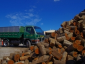 55_firewood_delivery_3.5_tonne_truck