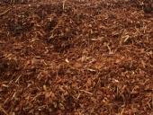 85_pine_bark_40mm