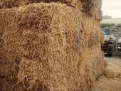 95_pea_straw_bales