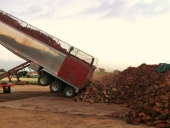 98_firewood_delivery_semi