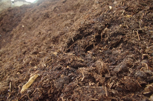 Mulch ground covers compost for landscaping in southern for Mushroom soil